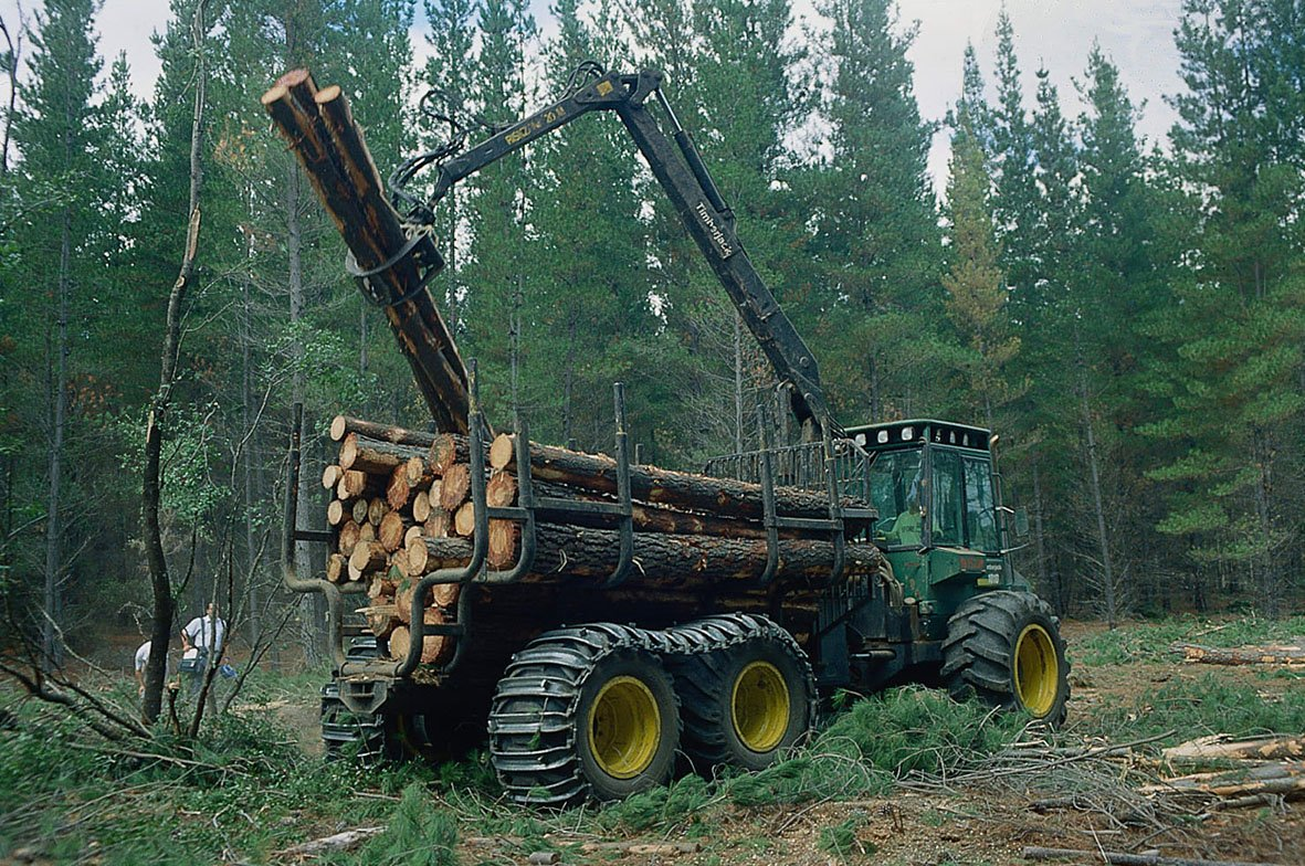 industria forestal.jpg