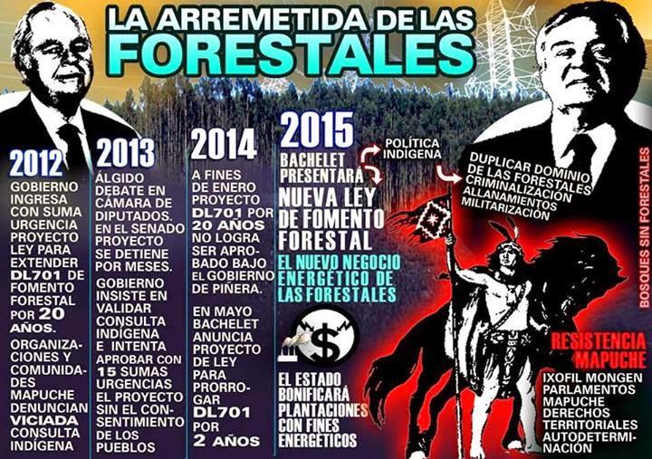 Gobierno forestales chile.jpg